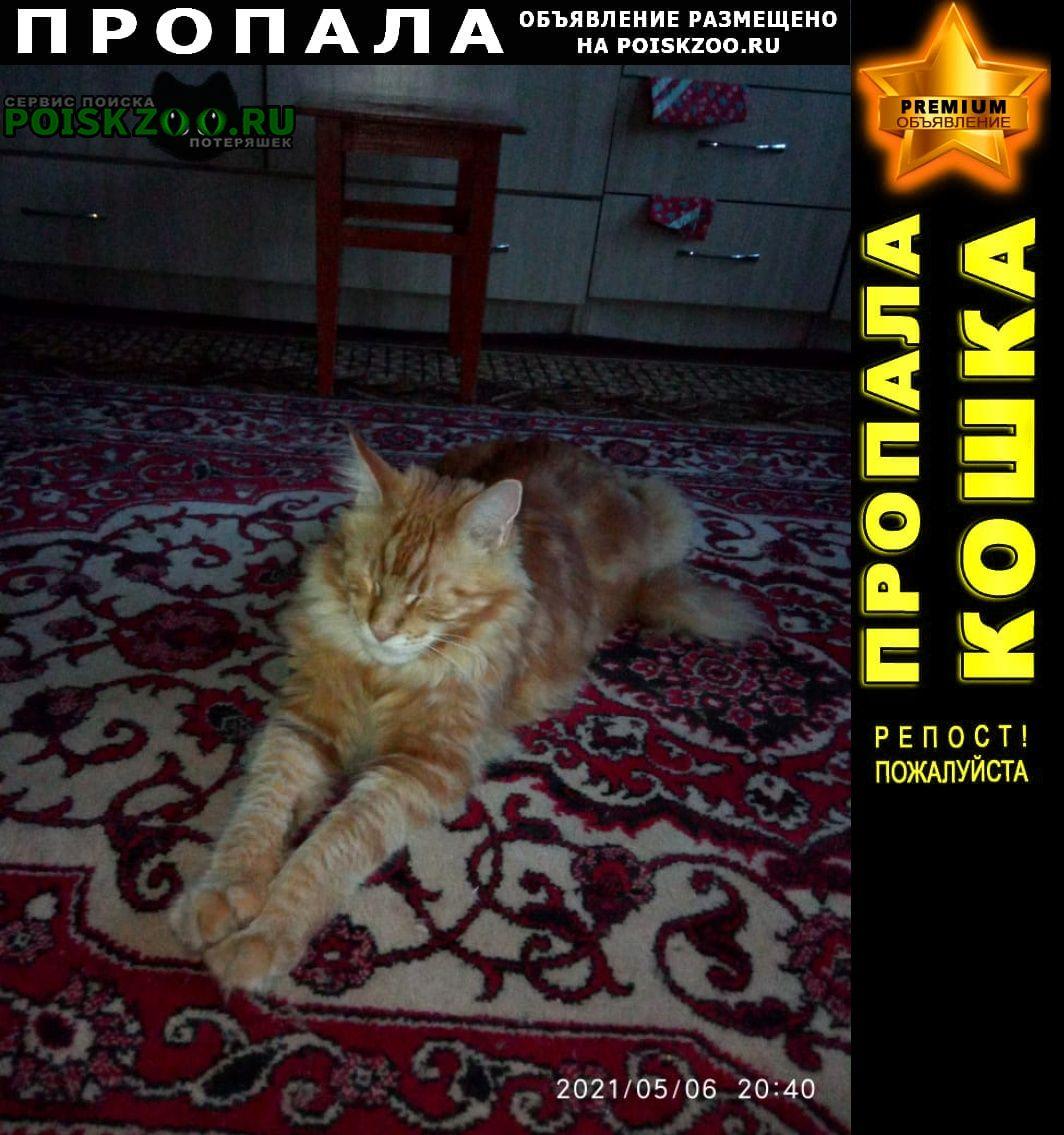 Пропал кот Фирово