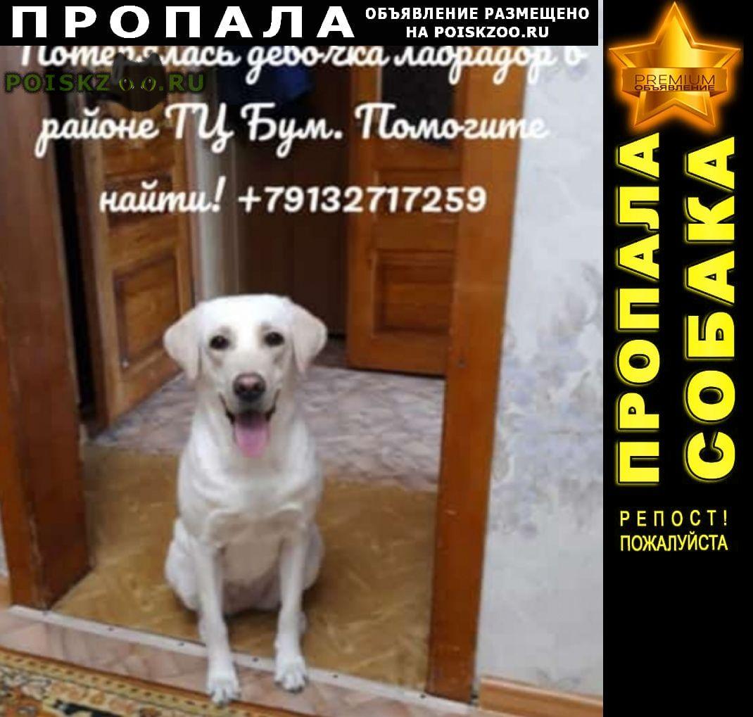 Пропала собака помогите г.Барнаул