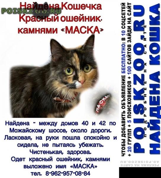 Найдена кошка трехцветная на ошейнике - маска г.Москва