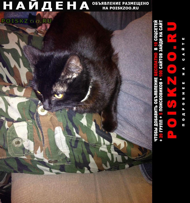 Найден кот чёрный Заокский