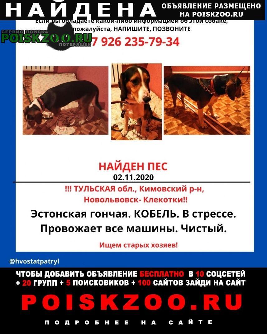 Найдена собака эстонская гончая Кимовск