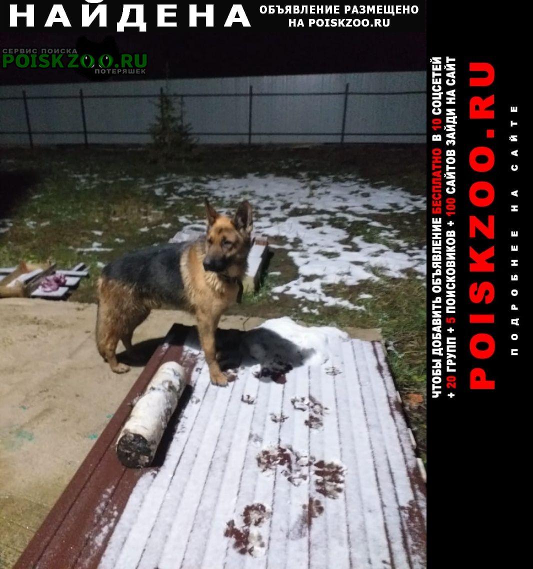 Найдена собака Фряново