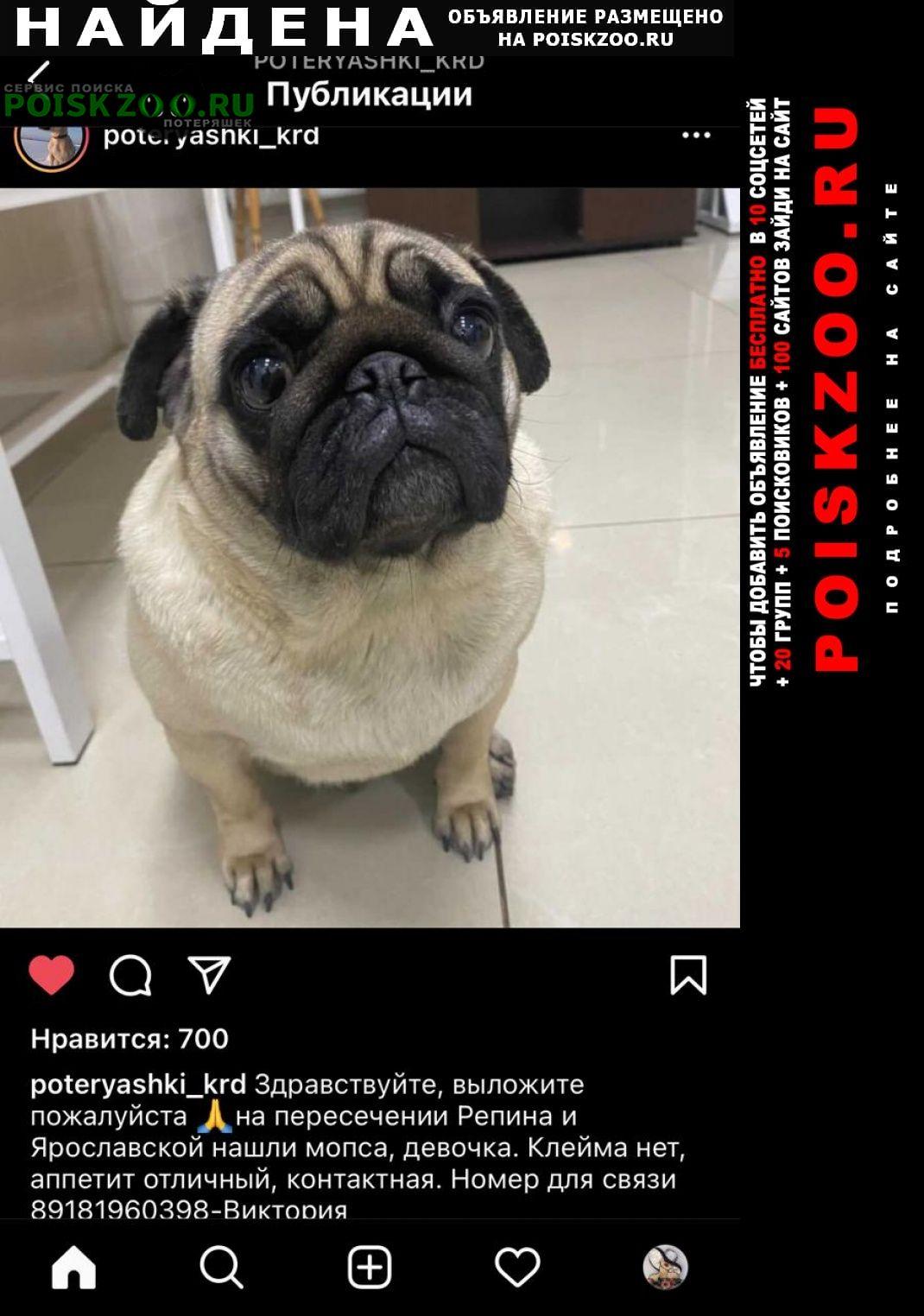 Найдена собака связь через эбц Краснодар