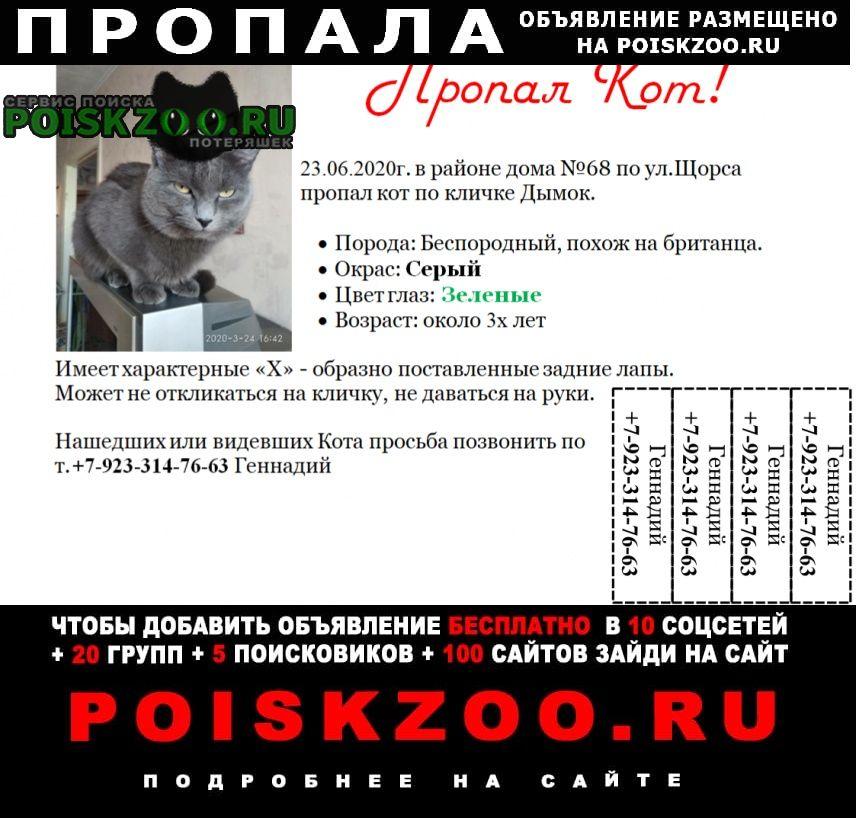 Пропал кот #нужнапомощь г.Красноярск
