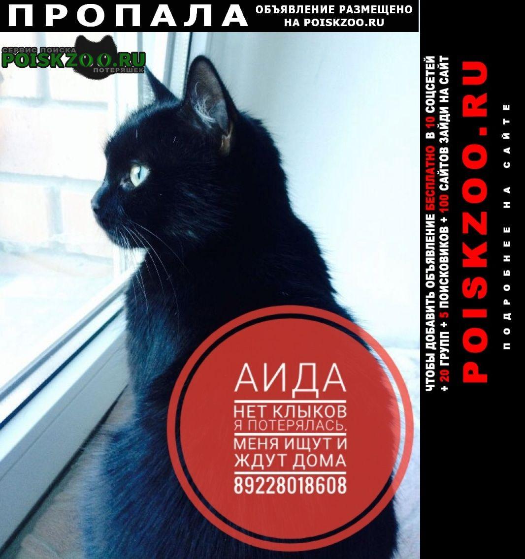 Пропала кошка волжский район г.Саратов