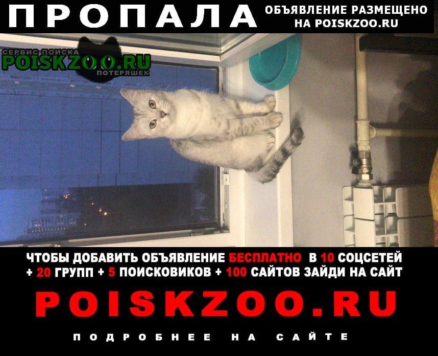Пропала кошка помогите найти г.Москва