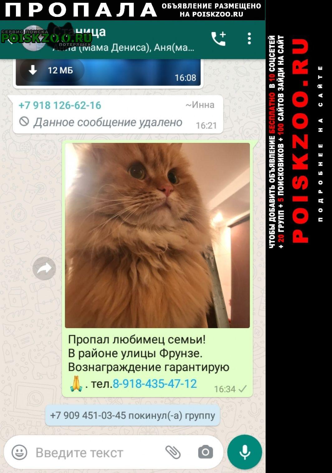 Пропала кошка кот рыжий, кличка леопольд Северская