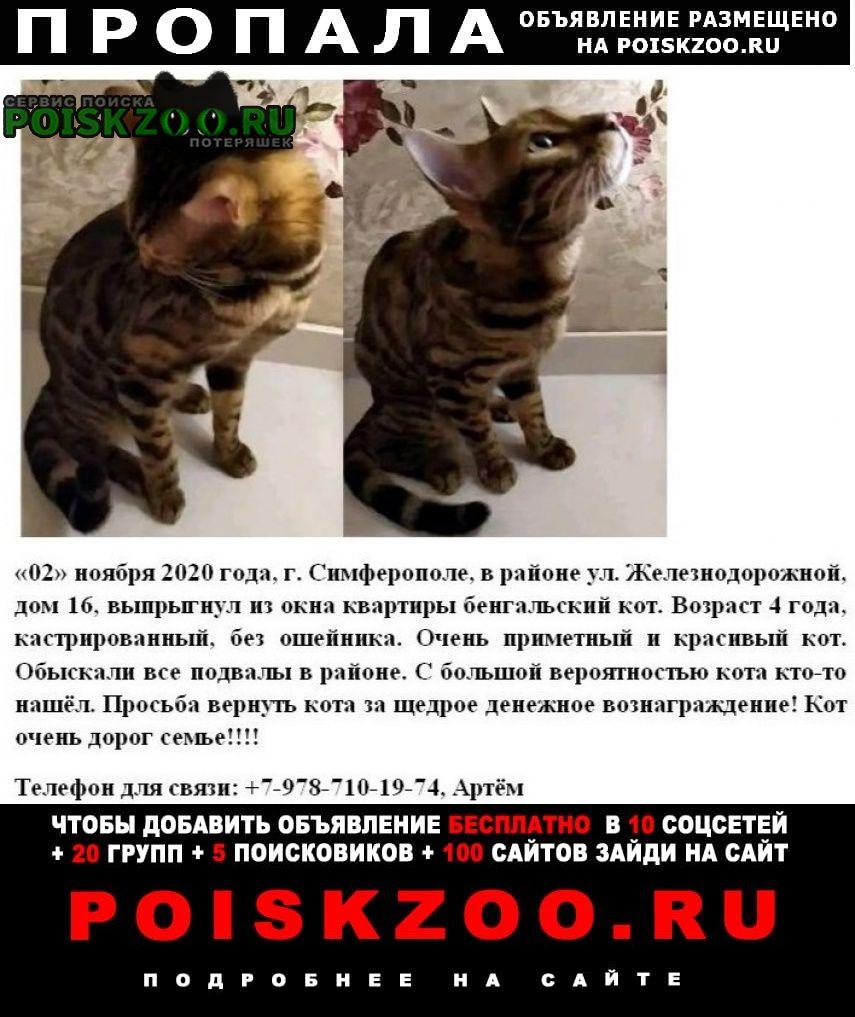 Пропала кошка бенгальский кот Симферополь