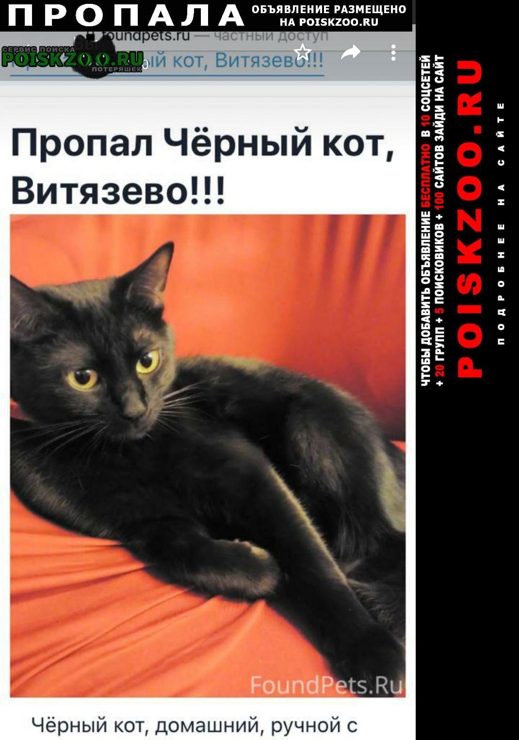 Пропал кот помогите Анапа