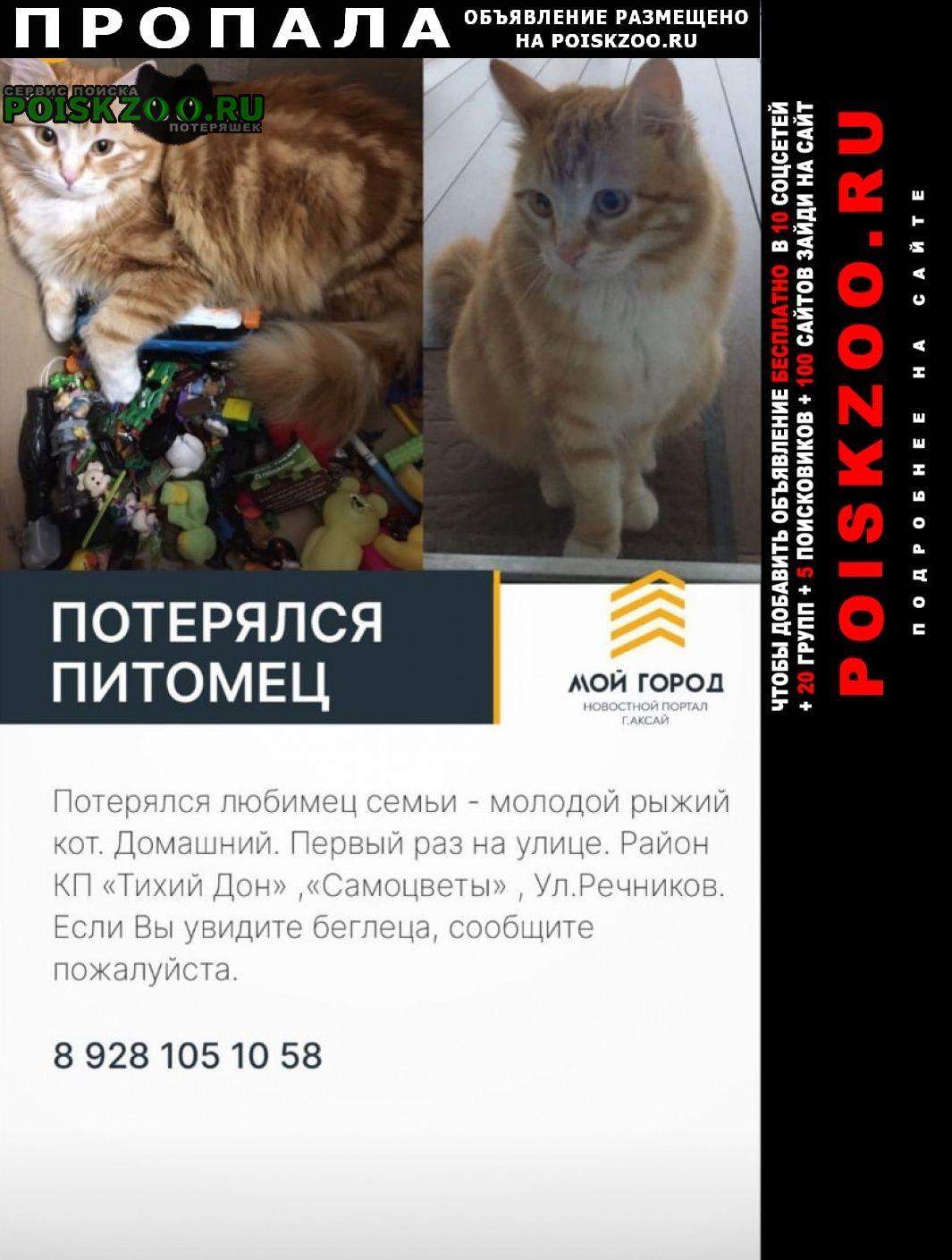 Пропал кот рыжик Аксай (Ростовская обл.)