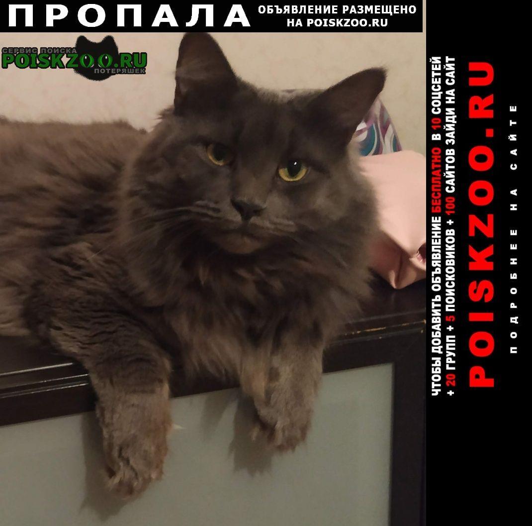 Пропал кот м. крылатское Москва