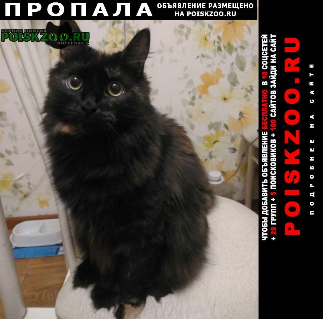 Пропала кошка озеро янисъярви респ. карелия Сортавала
