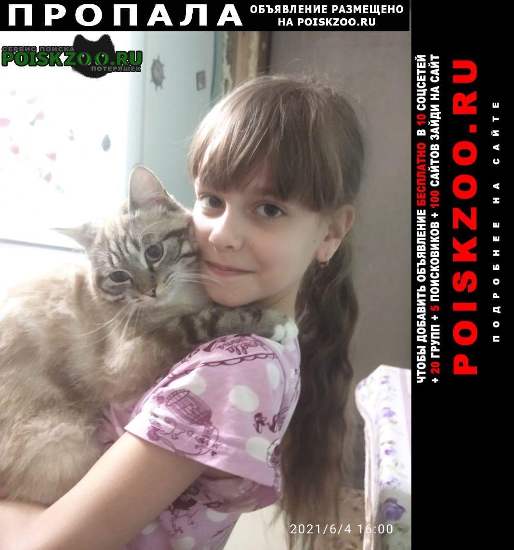 Пропала кошка Саратов