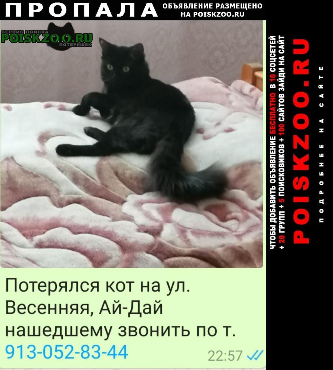 Пропал кот Саяногорск