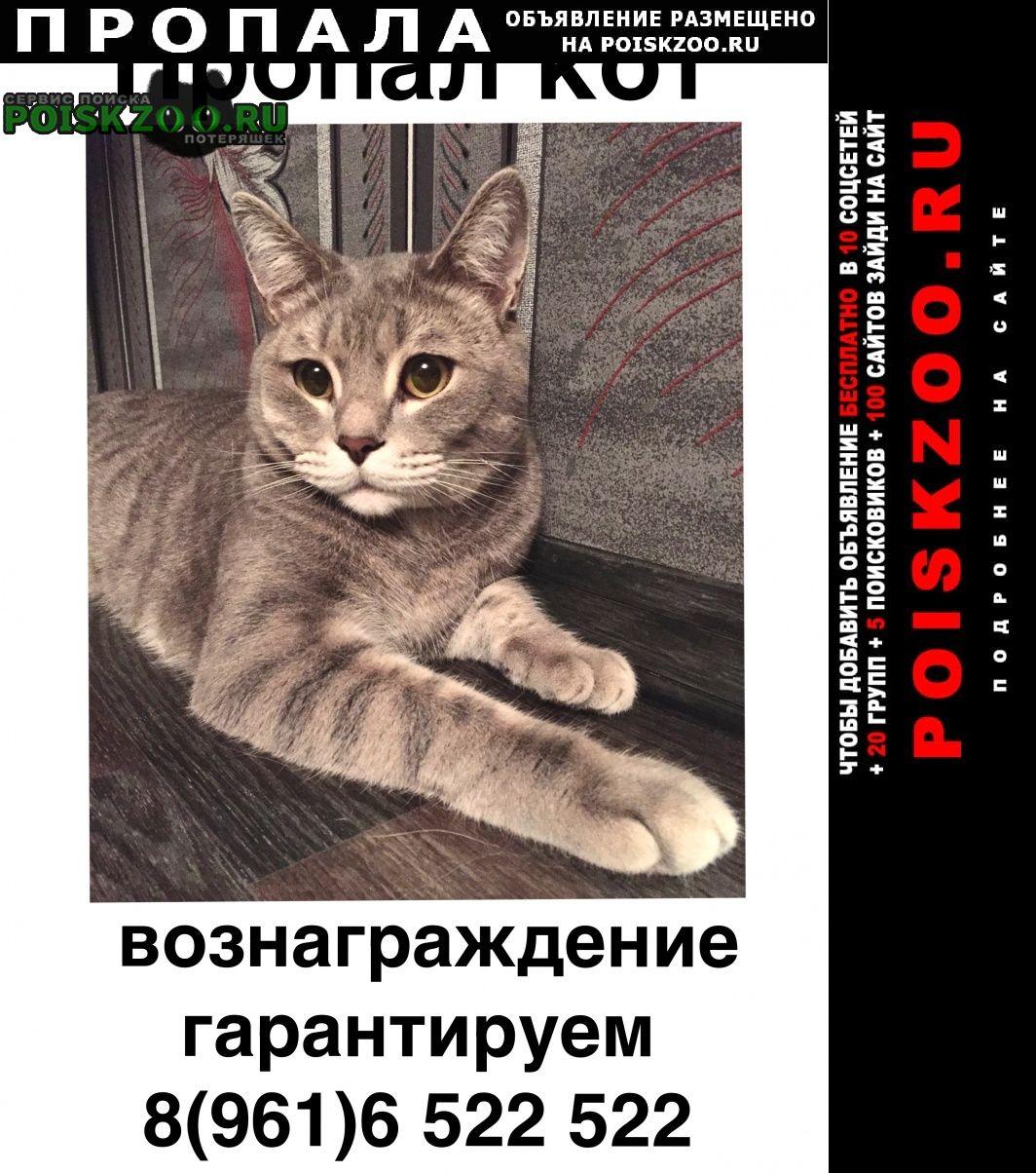 Пропал кот на свободном вышел из калитки и Астрахань