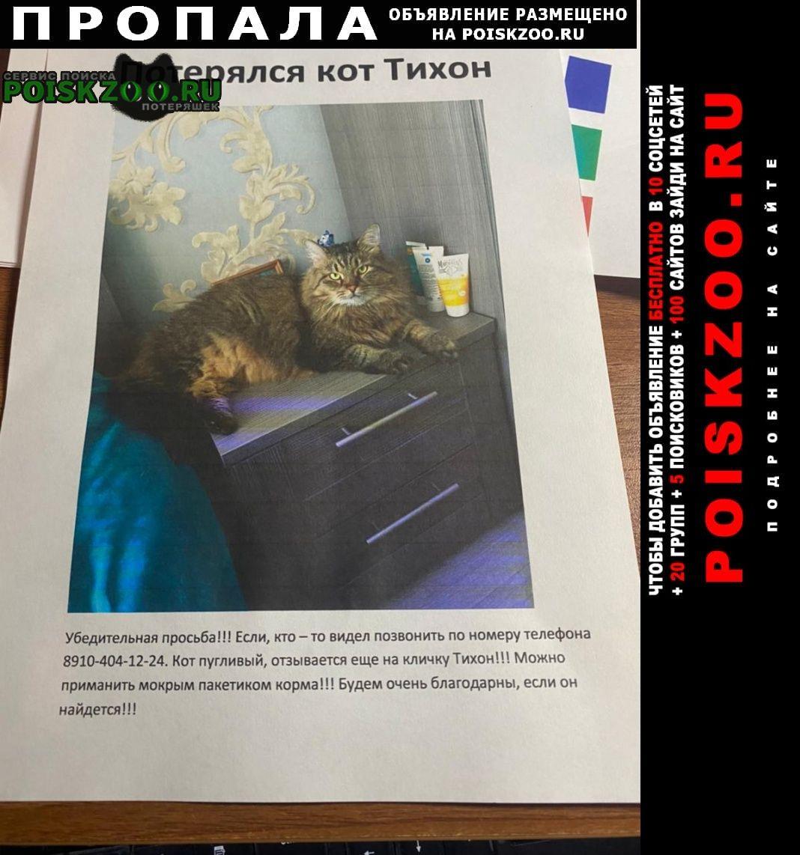 Пропал кот убежал тихон Кашира