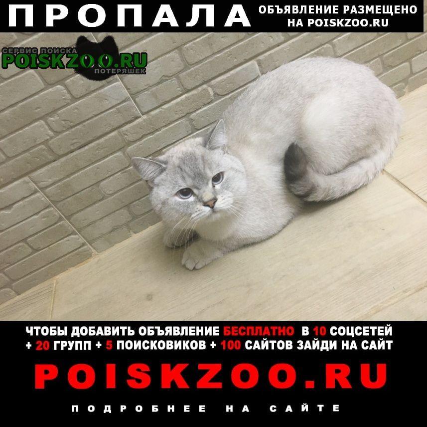 Оренбург Пропал кот. район малая земля