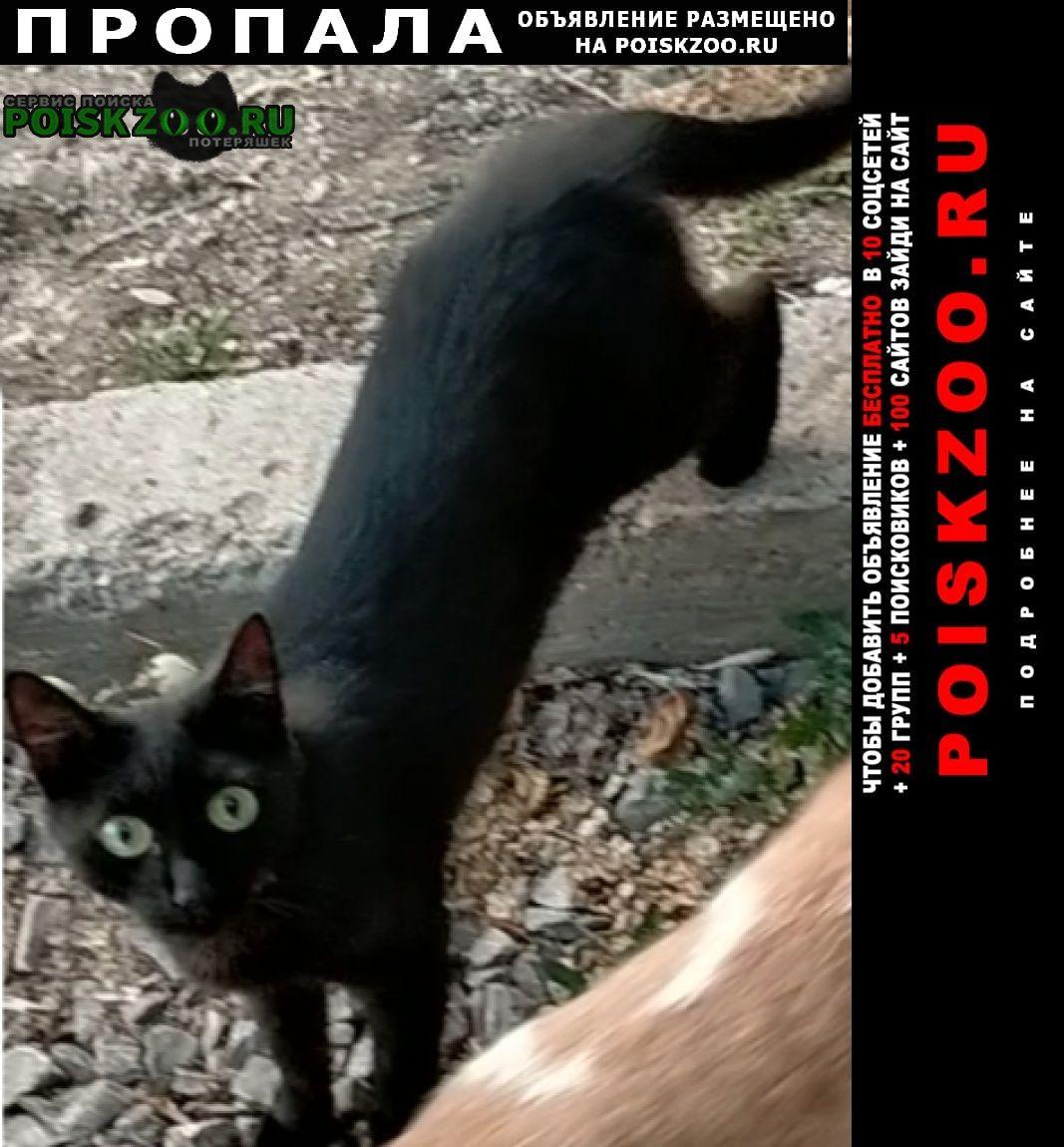 Пропала кошка в районе зубово под уфой Уфа