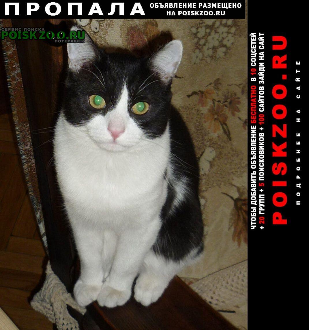 Москва Пропал кот чёрно-белый