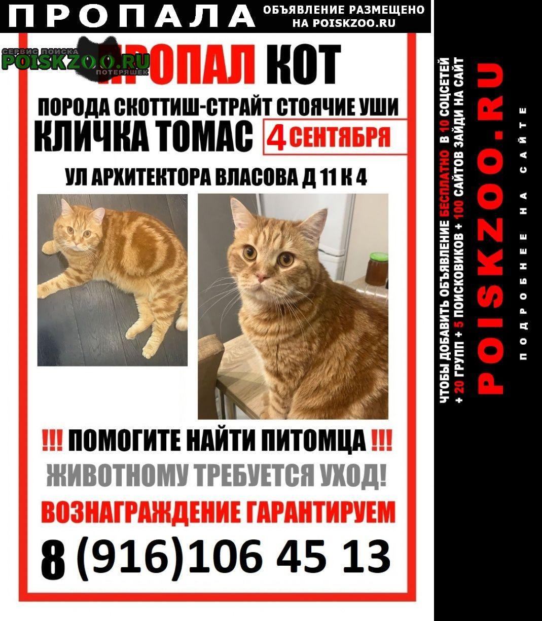 Москва Пропал кот рыжий шотландец район черемушки