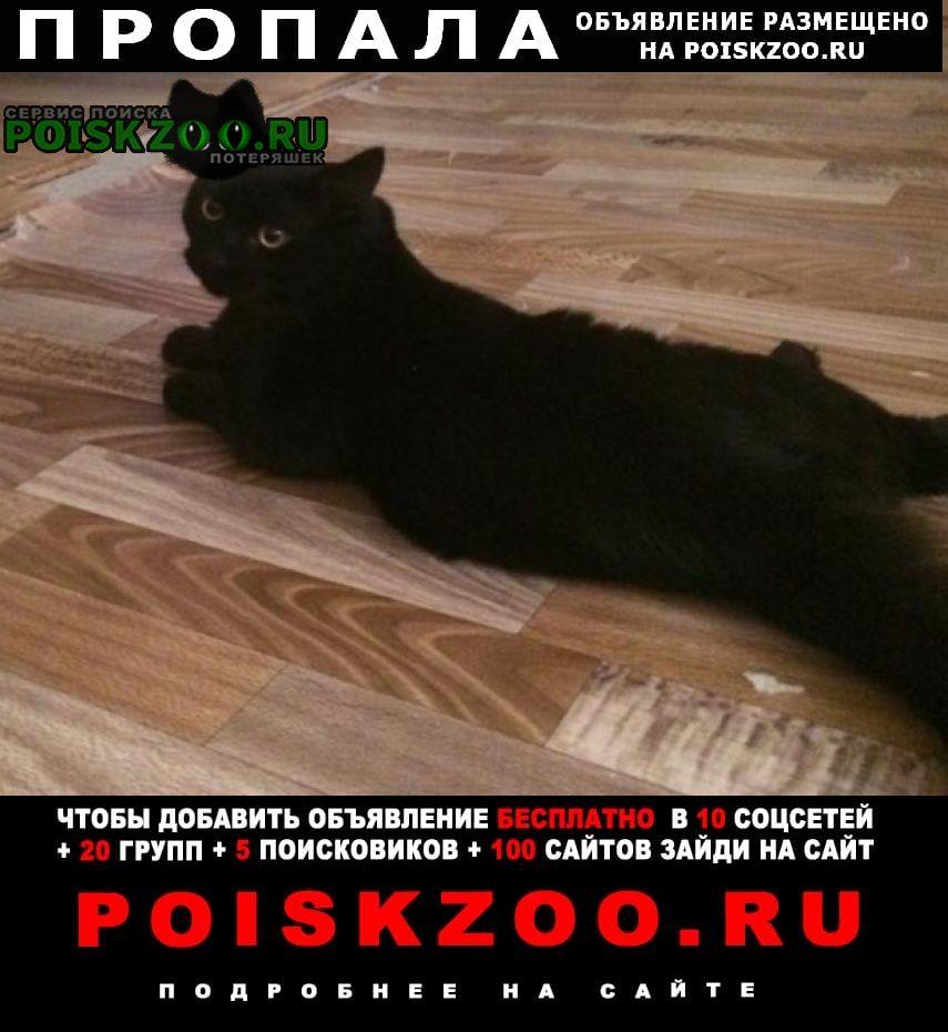Пропал кот помогите вернуть домой Серпухов