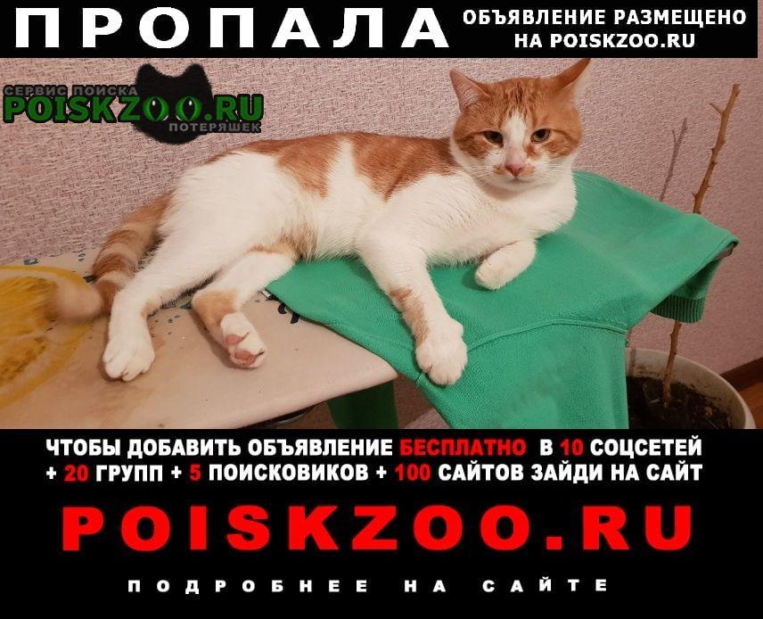 Пропал кот наш любимый, наш член семьи Краснодар