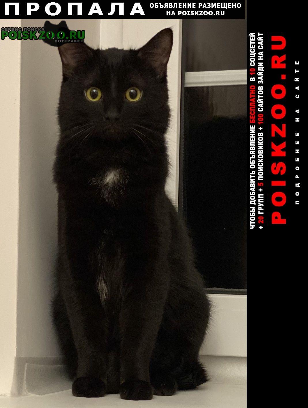 Раменское Пропал кот из киз гжель-5 (фенино)
