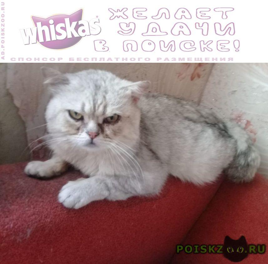 Пропал кот 🆘срочно нужна помощь    р г.Москва