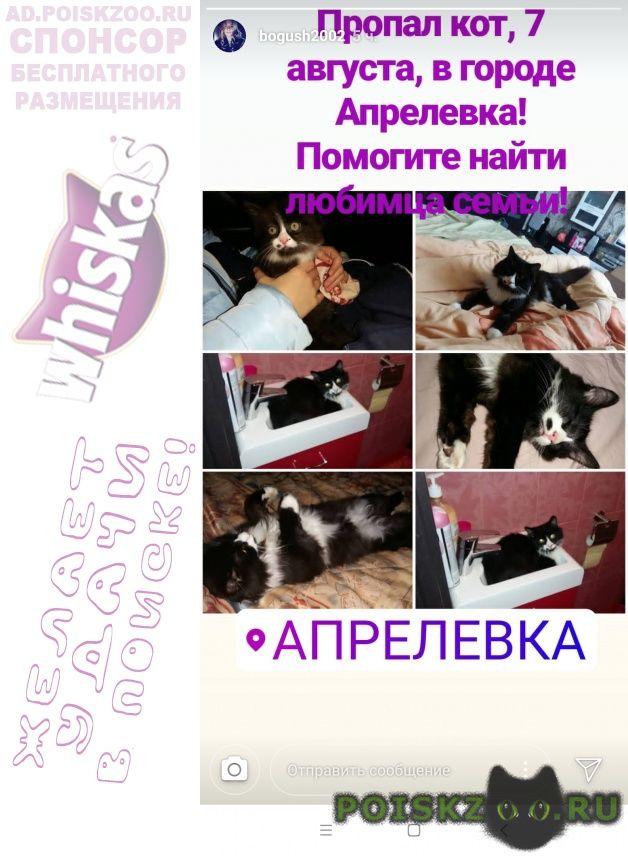 Пропал котик черный с белым снт озёрное г.Апрелевка