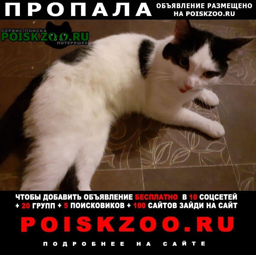 Помогите найти на улице шишкова г.Томск