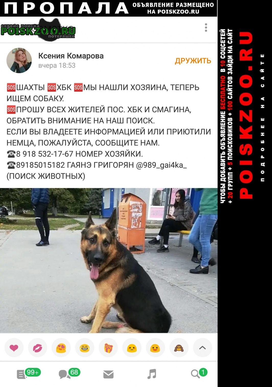 Пропала собака кобель важна любая информация Шахты