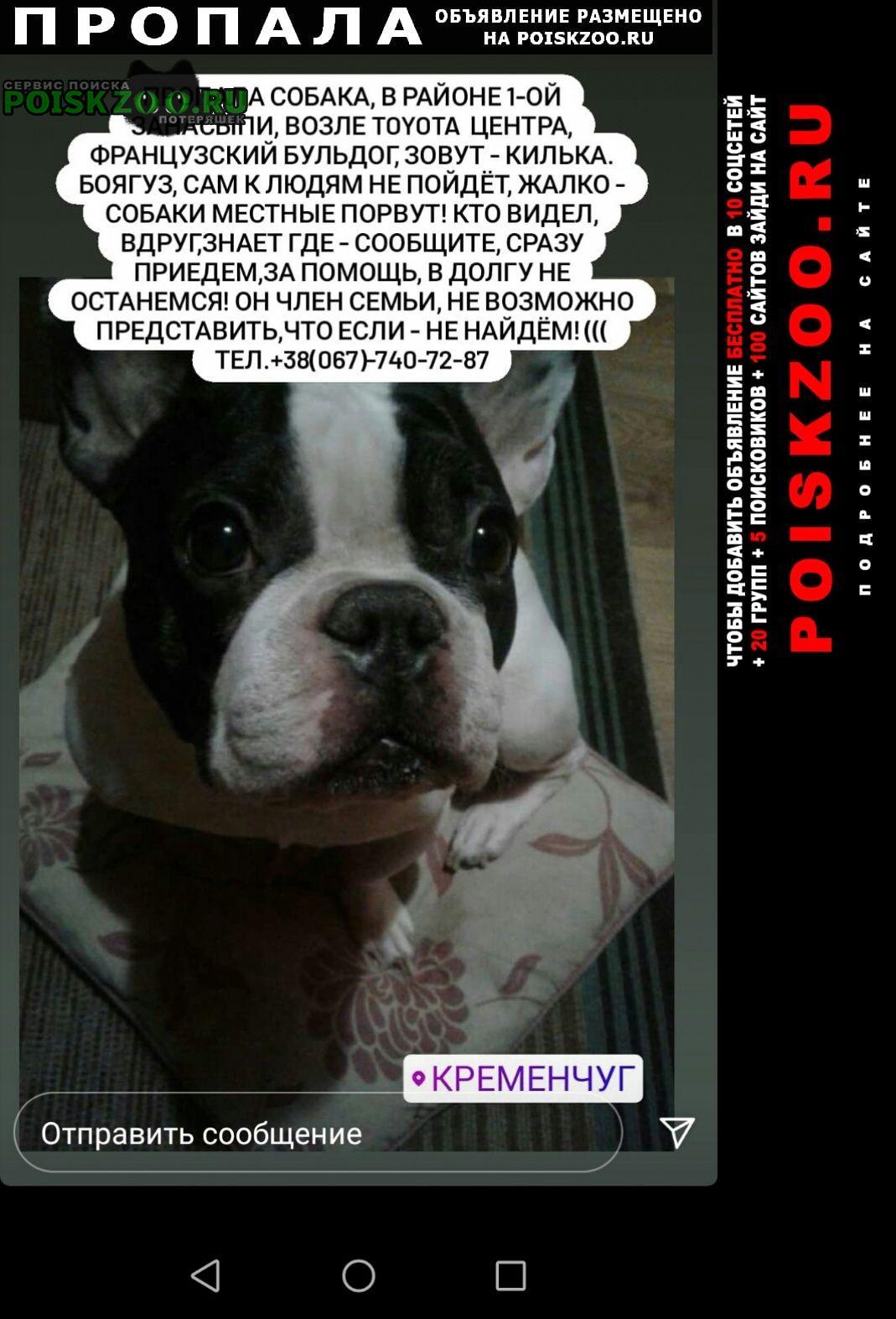 Пропала собака член семьи Кременчуг