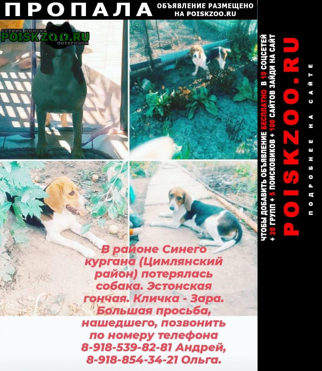 Пропала собака Цимлянск