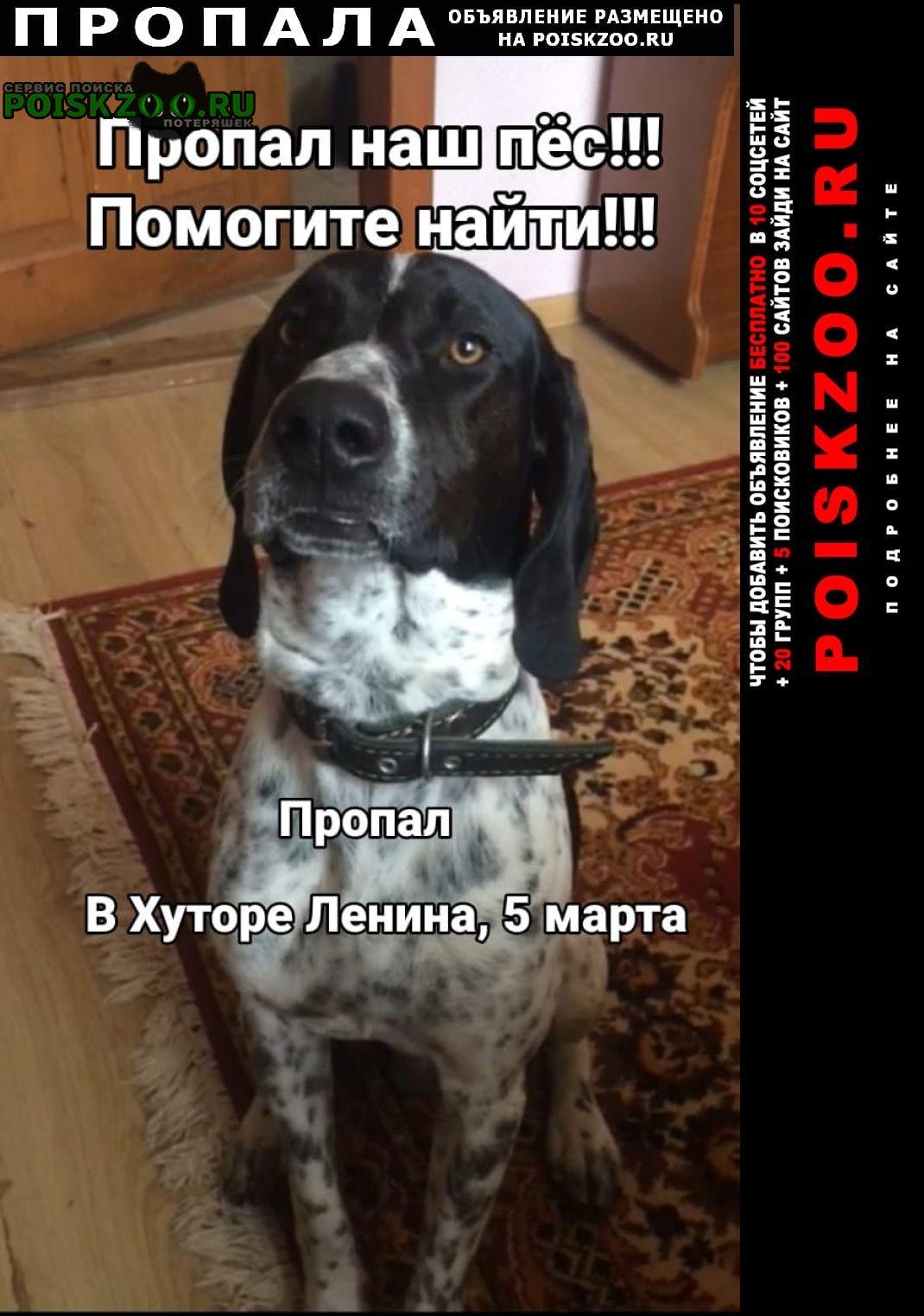 Краснодар Пропала собака кобель в хуторе ленина