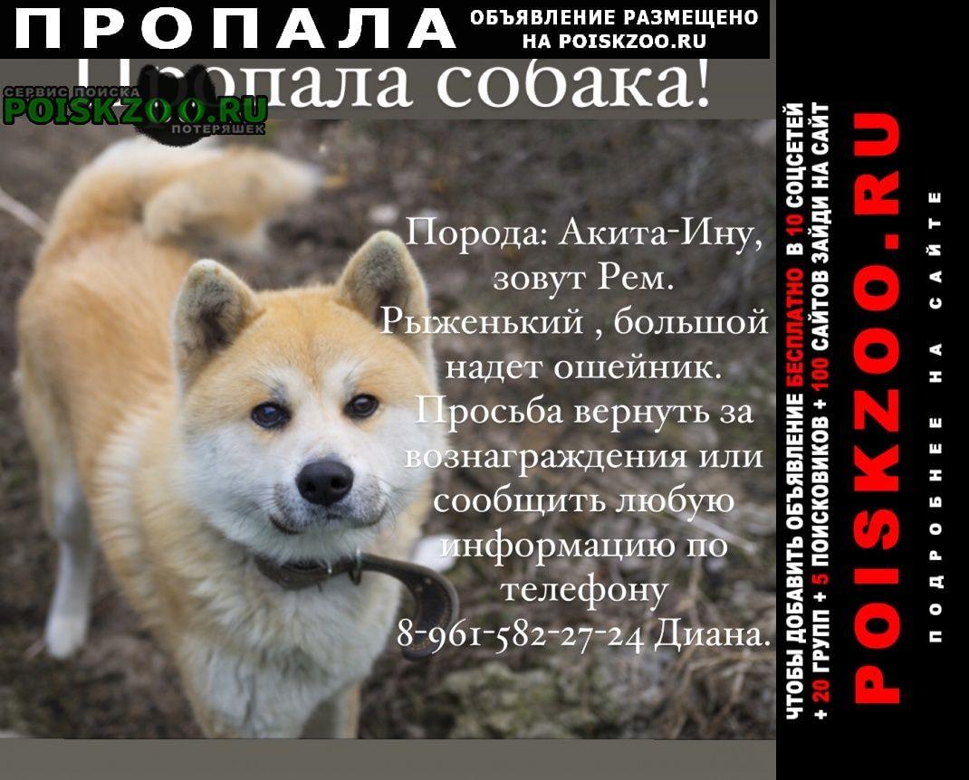 Пропала собака кобель Тихорецк