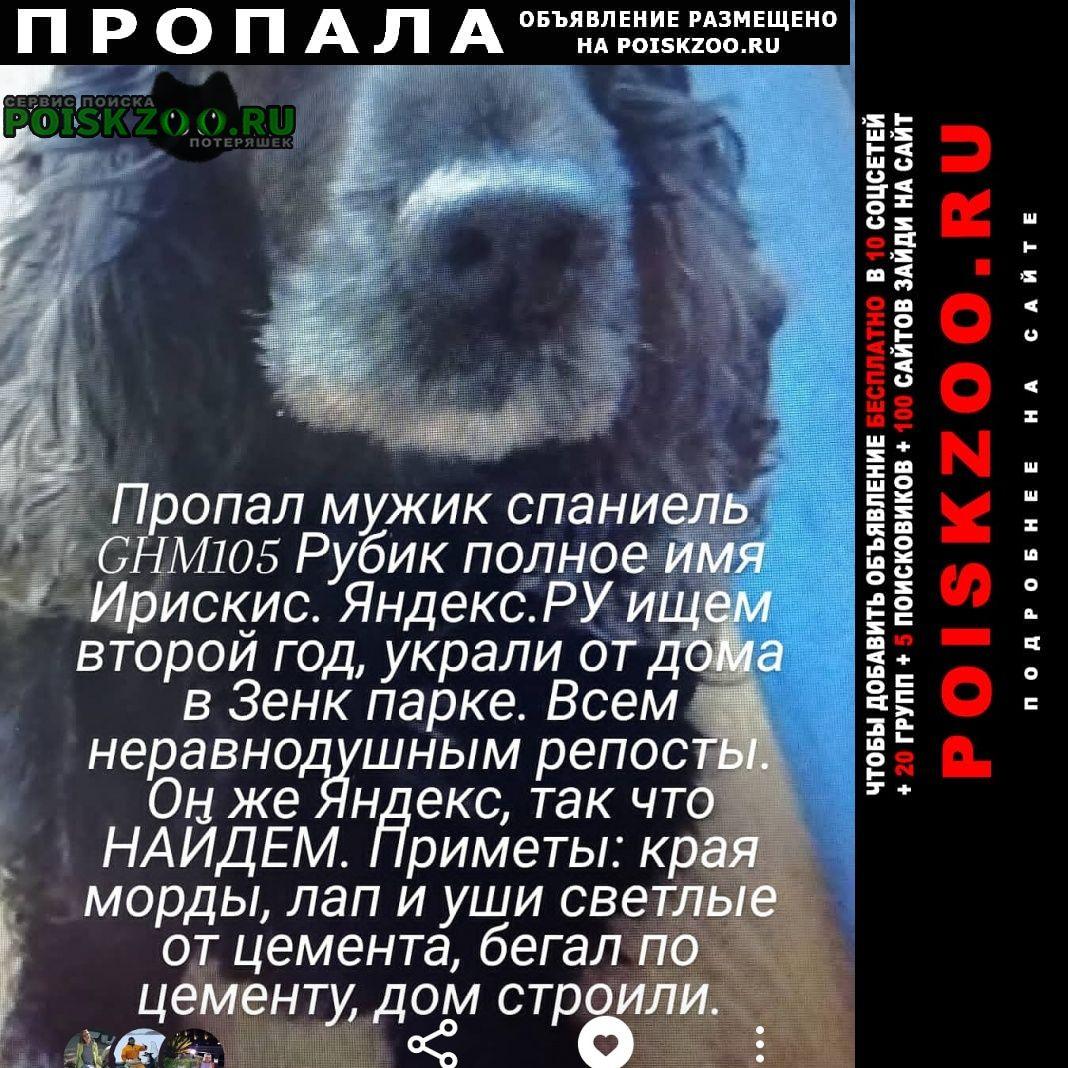 Пропала собака кобель рубик Прокопьевск