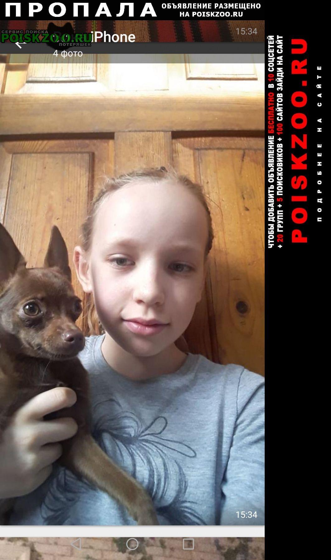 Пропала собака Оренбург