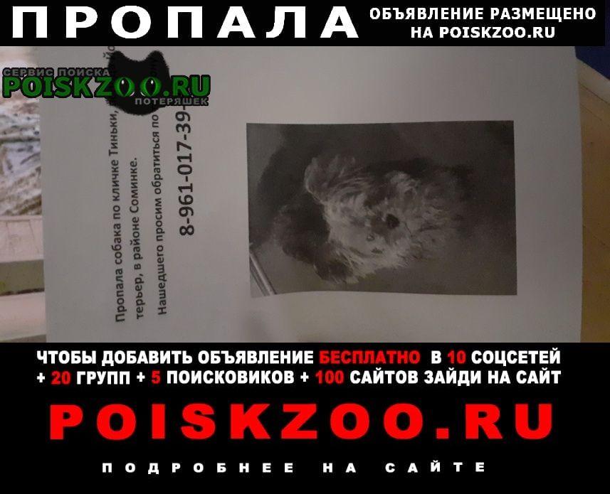 Пропала собака кобель с 13 числа по 14 июня Тверь