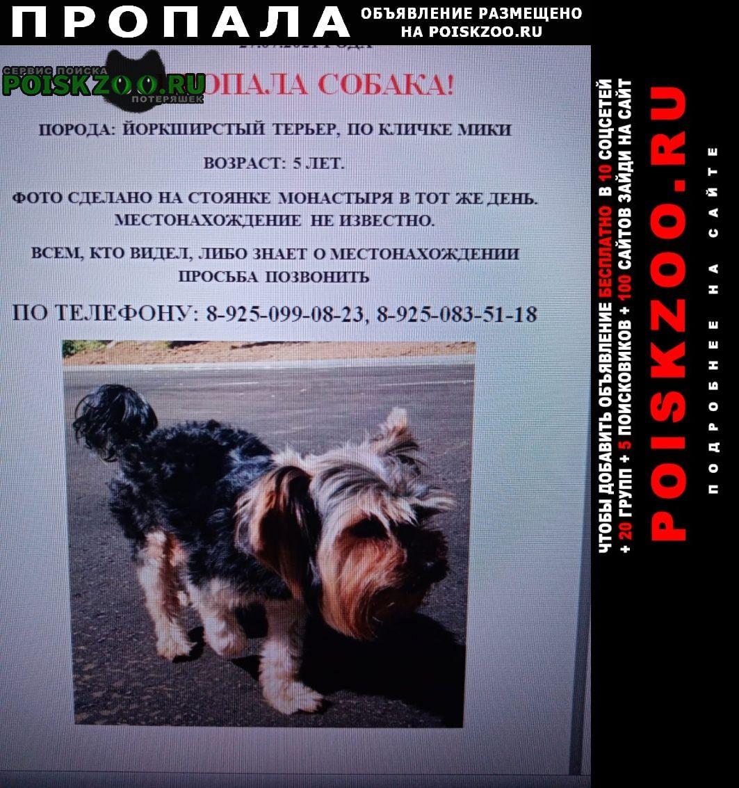 Пропала собака кобель Звенигород