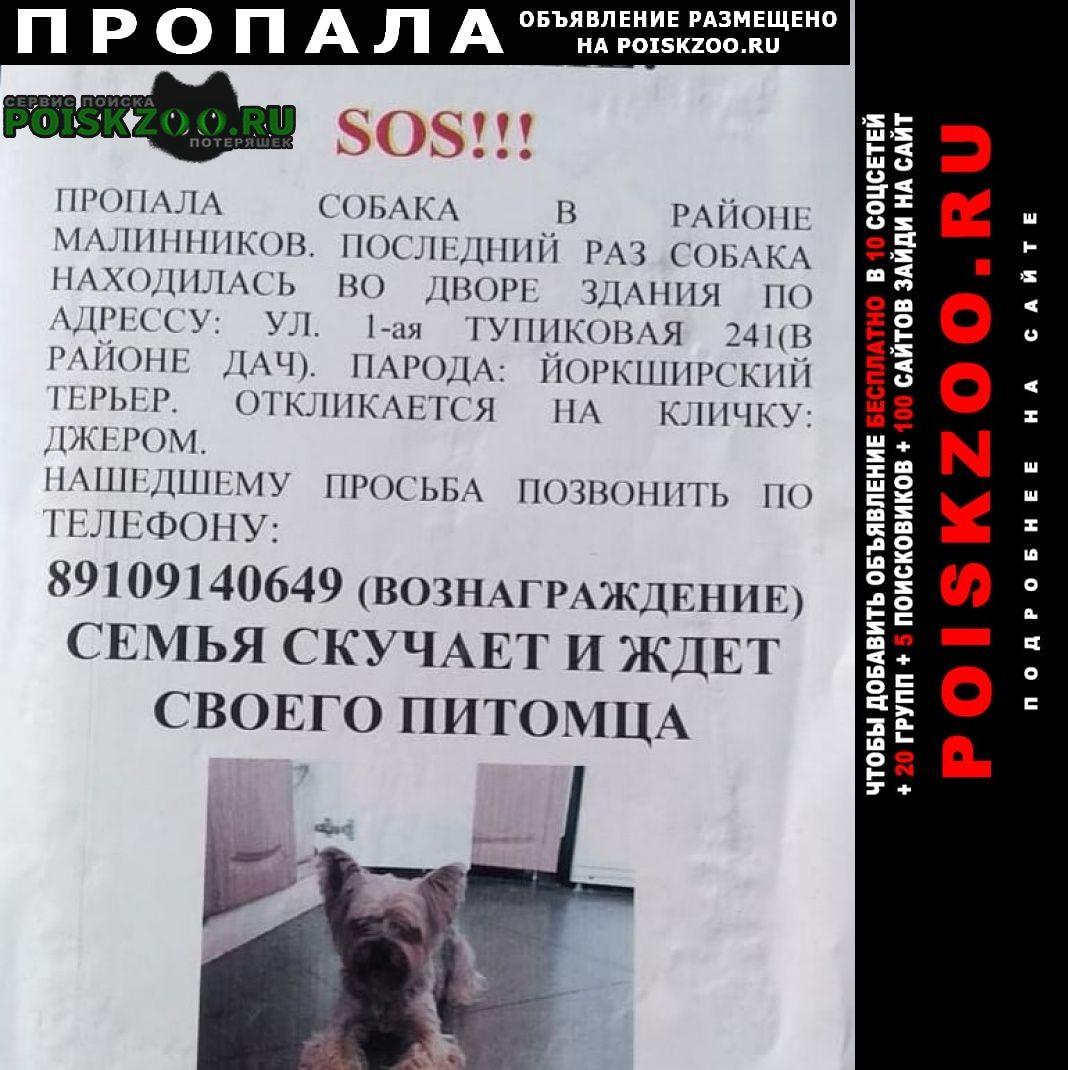 Калуга Пропала собака кобель помогите