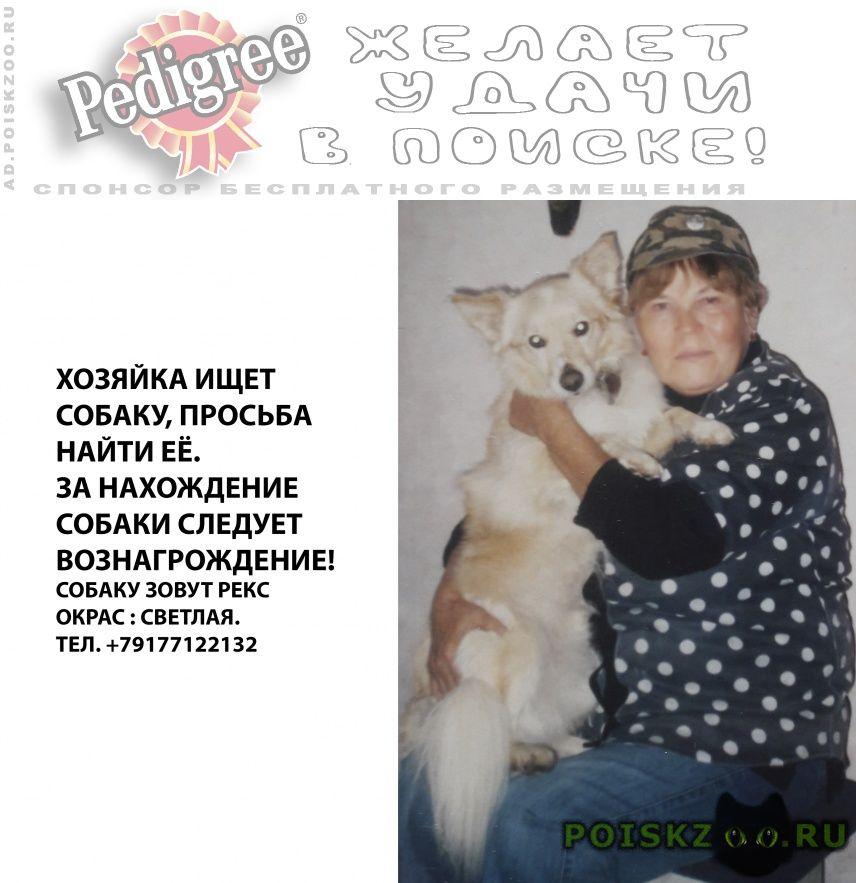 Пропала собака кобель г.Медведево