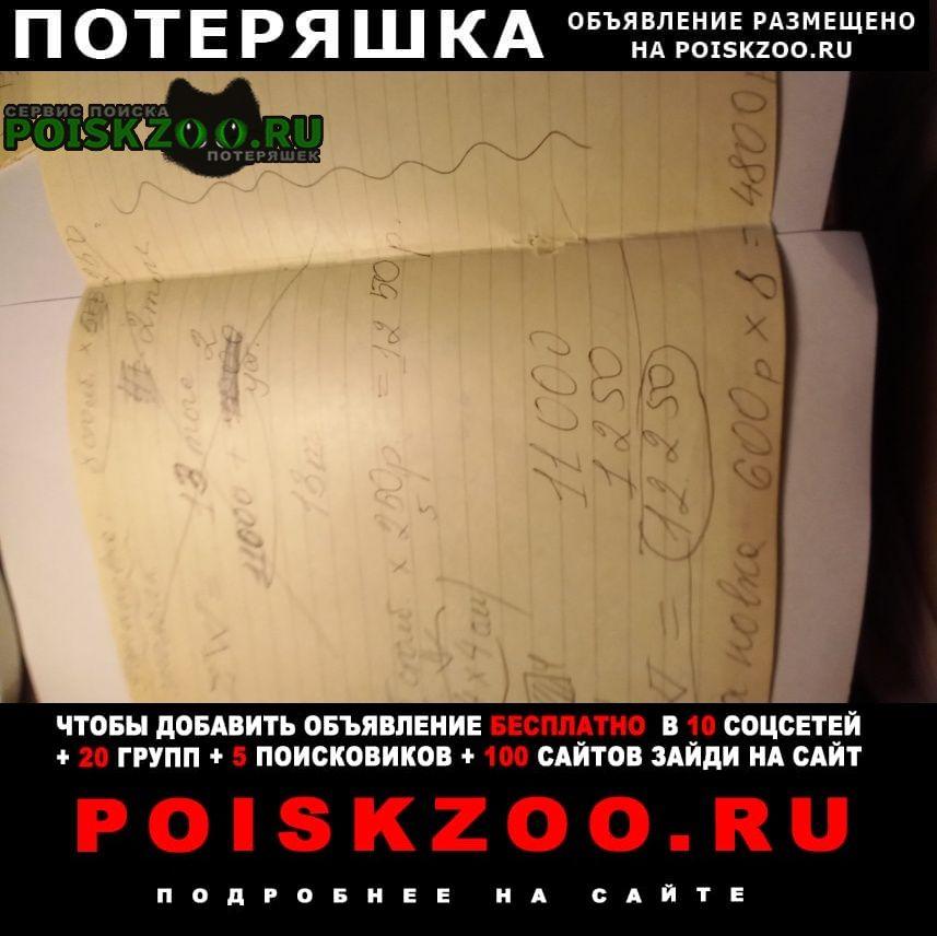 Пропало домашнее животное кот Челябинск