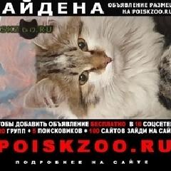 Найдена кошка г.Люберцы